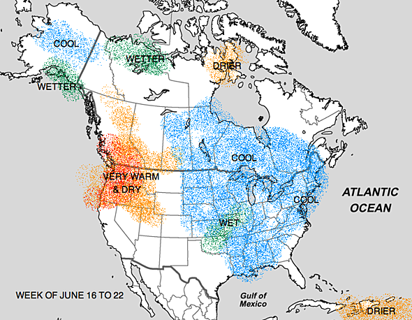 June 2014 Forecast Warm and Hot