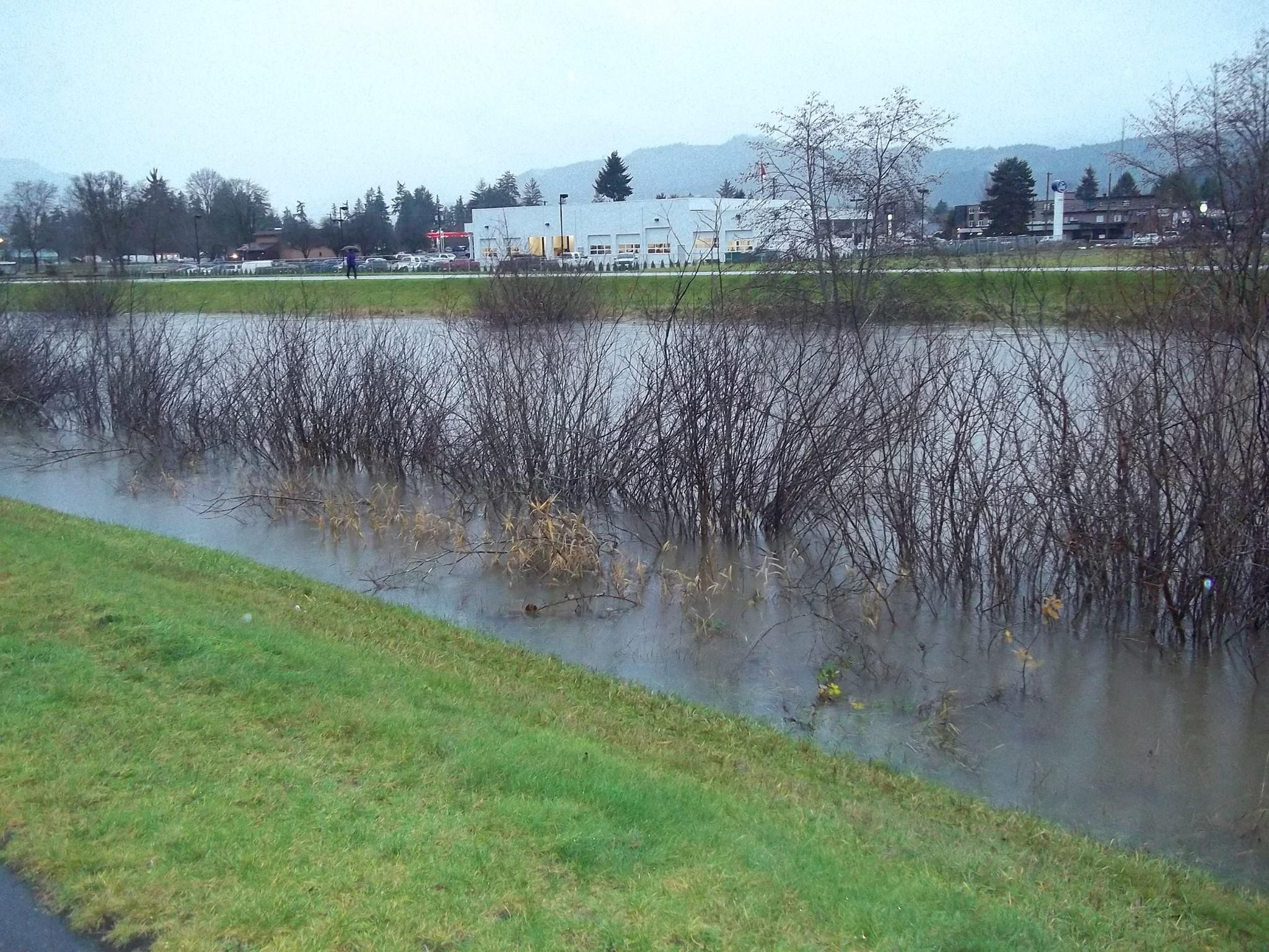 The Dyke/Kitsuksis Creek is getting full