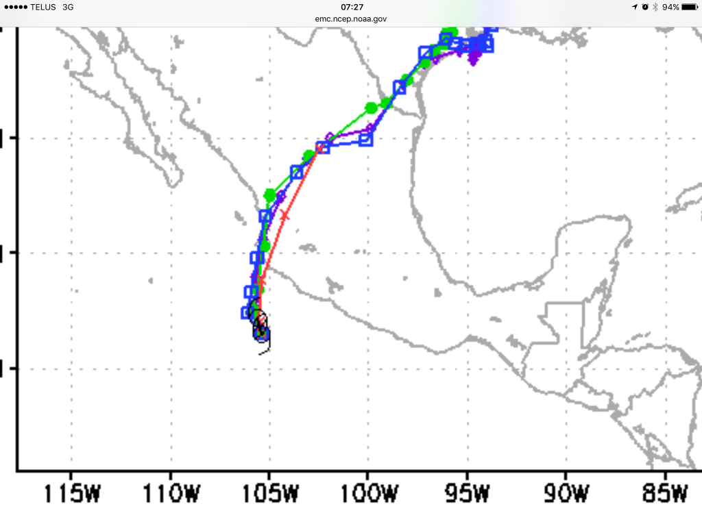 A closeup of the landfall track. The models are goin riht over PV, official is not.